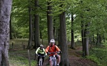 Mountainbike. Rent, ride and drop down the bike